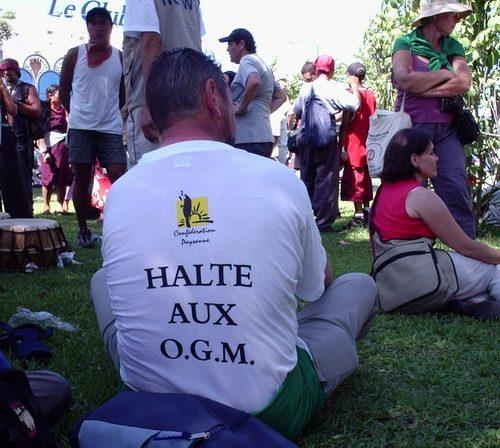 halteauxogmsqbtt6.jpg